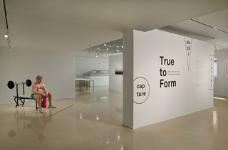 <em>True to Form: Selections From the Permanent Collection</em>, Exhibition identity, Cranbrook Art Museum, 2018 Photo by PD Rearick